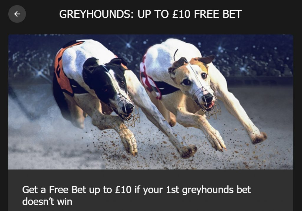Greyhound Racing Bet refunded at 10bet.com