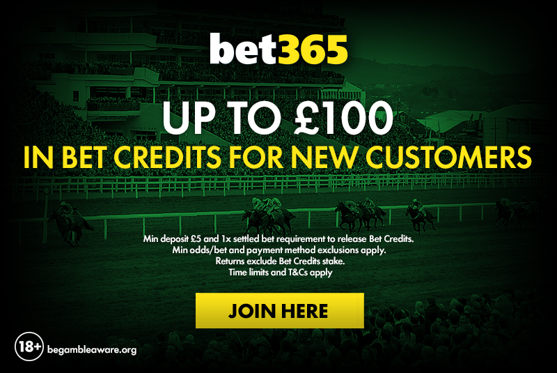 Bet365 Cheltenham betting