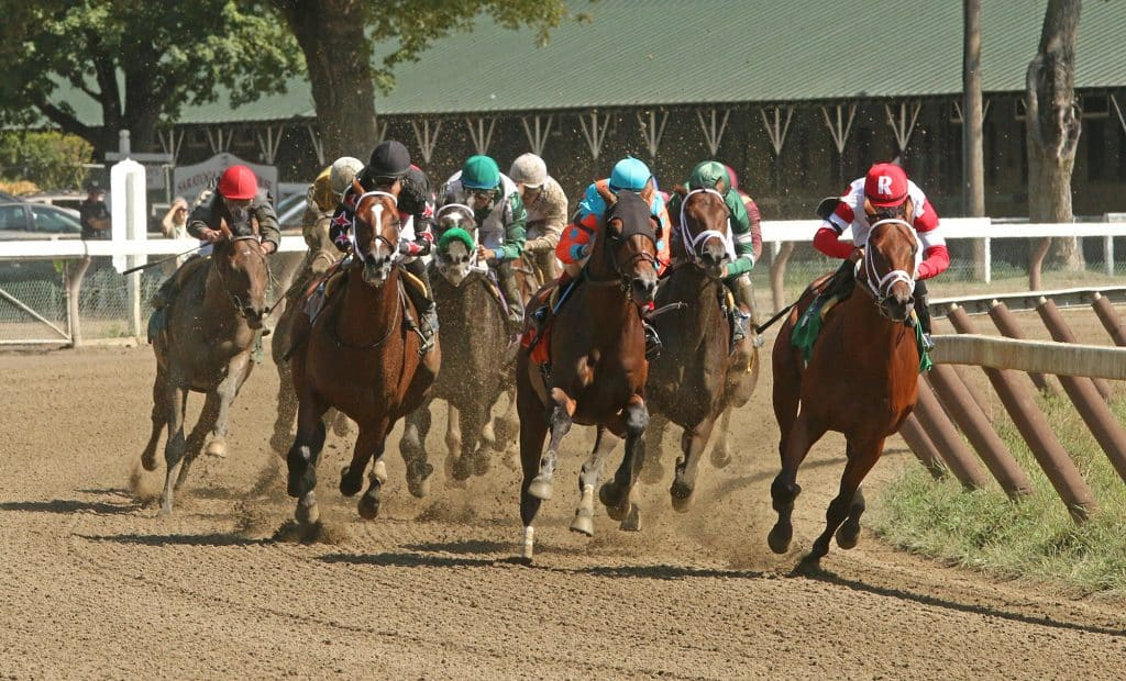 Live Streaming for Horse Racing