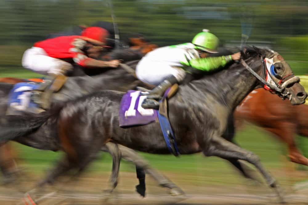 Which Top Bookies offer Live Streaming for Horse Racing