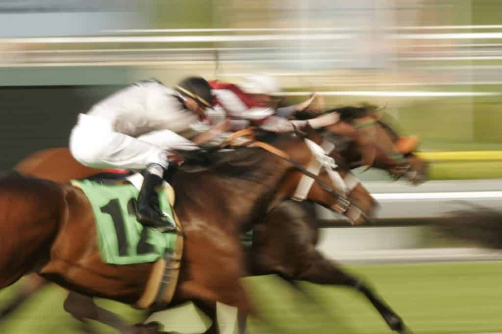 What are the best new horse racing betting sites for UK players